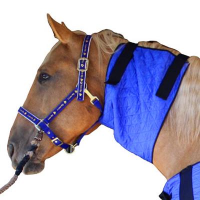 Cooling Horse Neck Cooler