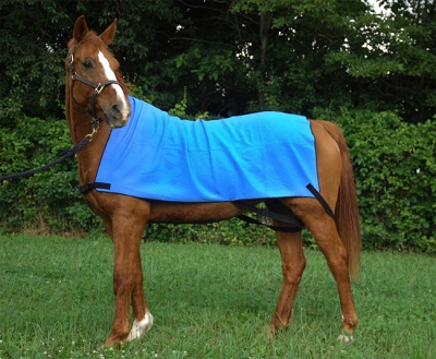 Cooling Horse  Body Wrap
