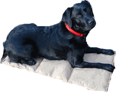 PHASE CHANGE COOLING DOG PAD/MAT