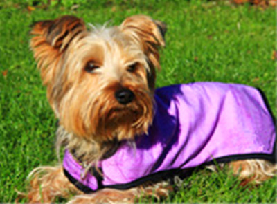 Cooling Vest For Dogs